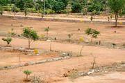 Residential Plot For Sale in Shamshabad, Price :1.92 Lac(s) (Negotiable