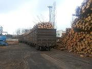 Предлагает к продаже лес - кругляк из России
