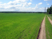 Agricultural Lands For Sale in Moinabad