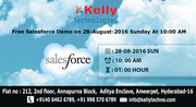 Free Salesforce Demo on 28-August-2016 Sunday At 10:00 AM