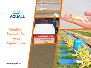 Buy Aquaculture Products at Best Prices in India | Aquall