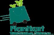 Buy indoor house plants,  flowers,  shrubs,  seeds online | PlantKart