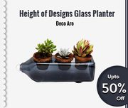 Heights of Design Glass Planters