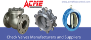 Wafer Check Valves In Hyderabad