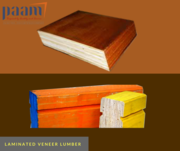 Seasoned,  waterproof and non adherent laminated veneer lumber