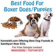 Kennels9 Offering Dog Food  Services In ECIL