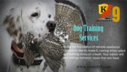 Kennels9 Offering Dog Training Services