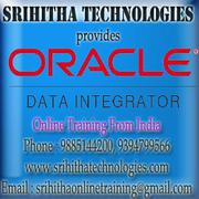 ODI Online Training From India
