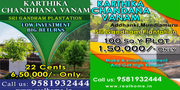 100 Sq Yards 1.5 Lacs Only With Sandal Wood Plantation plots