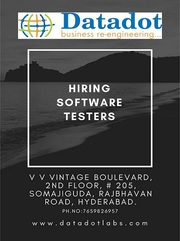 Looking for 0Software Tester & Test Lead