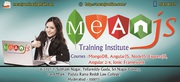 Mean stack training in Hyderabad