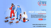 Pest Control Services For Termites,  Cockroaches,  Bed bugs